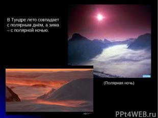 В Тундре лето совпадает с полярным днём, а зима – с полярной ночью. (Полярная но