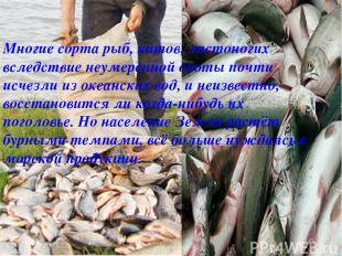 Многие сорта рыб, китов, ластоногих вследствие неумеренной охоты почти исчезли и