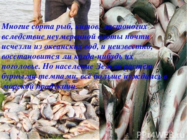 Многие сорта рыб, китов, ластоногих вследствие неумеренной охоты почти исчезли из океанских вод, и неизвестно, восстановится ли когда-нибудь их поголовье. Но население Земли растёт бурными темпами, всё больше нуждаясь в морской продукции.