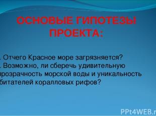 ОСНОВЫЕ ГИПОТЕЗЫ ПРОЕКТА: 1. Отчего Красное море загрязняется? 2. Возможно, ли с