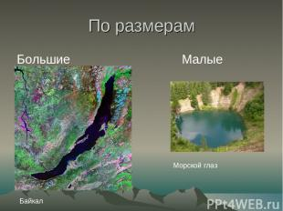 По размерам Большие Малые Морской глаз Байкал