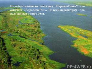 """Индейцы называют Амазонку """"Парана-Тинго"""", что означает «Королева Рек». По всем п"""