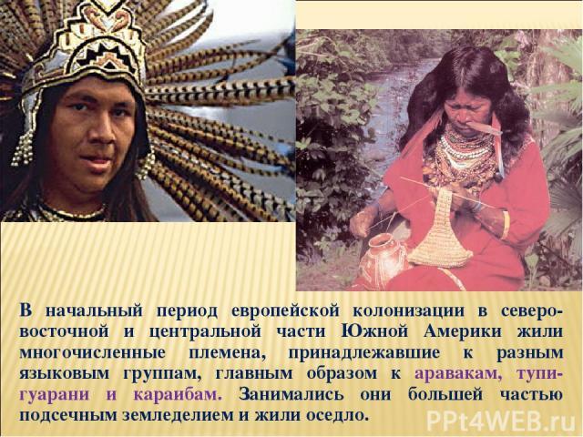 В начальный период европейской колонизации в северо-восточной и центральной части Южной Америки жили многочисленные племена, принадлежавшие к разным языковым группам, главным образом к аравакам, тупи-гуарани и караибам. Занимались они большей частью…