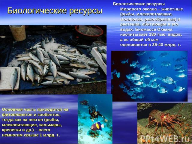 Биологические ресурсы Мирового океана – животные (рыбы, млекопитающие, моллюски, ракообразные) и растения, обитающие в его водах. Биомасса Океана насчитывает 180 тыс. видов, а ее общий объем оценивается в 35-40 млрд. т. Основная часть приходится на …