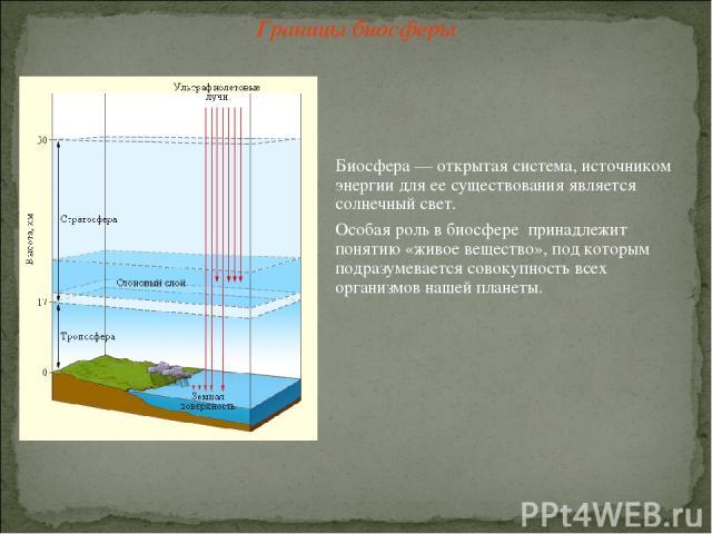 Границы биосферы Биосфера — открытая система, источником энергии для ее существования является солнечный свет. Особая роль в биосфере принадлежит понятию «живое вещество», под которым подразумевается совокупность всех организмов нашей планеты.