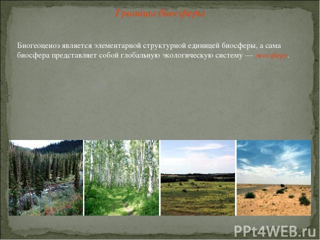 Границы биосферы Биогеоценоз является элементарной структурной единицей биосферы, а сама биосфера представляет собой глобальную экологическую систему — экосферу.