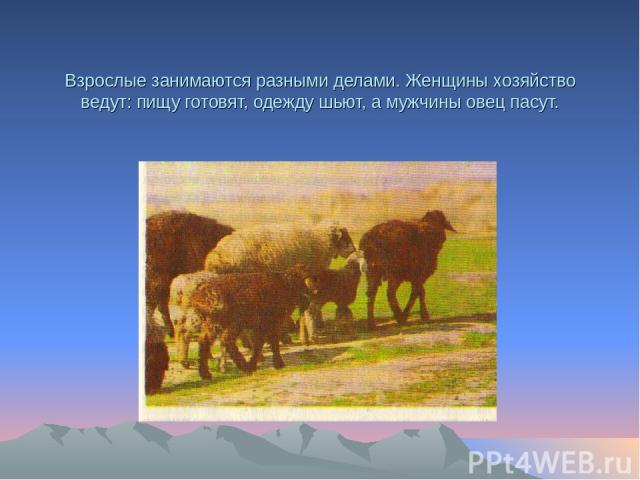 Взрослые занимаются разными делами. Женщины хозяйство ведут: пищу готовят, одежду шьют, а мужчины овец пасут.
