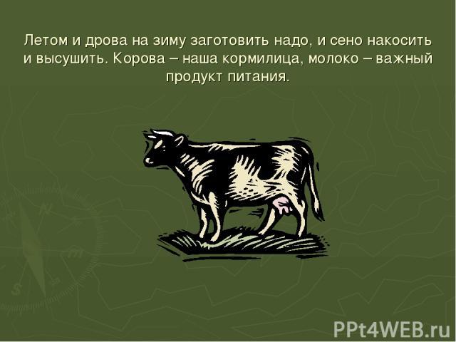 Летом и дрова на зиму заготовить надо, и сено накосить и высушить. Корова – наша кормилица, молоко – важный продукт питания.