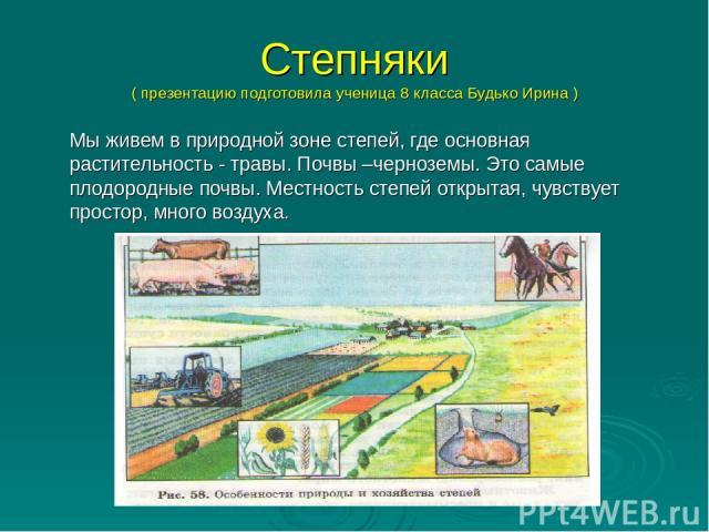 Степняки ( презентацию подготовила ученица 8 класса Будько Ирина ) Мы живем в природной зоне степей, где основная растительность - травы. Почвы –черноземы. Это самые плодородные почвы. Местность степей открытая, чувствует простор, много воздуха.