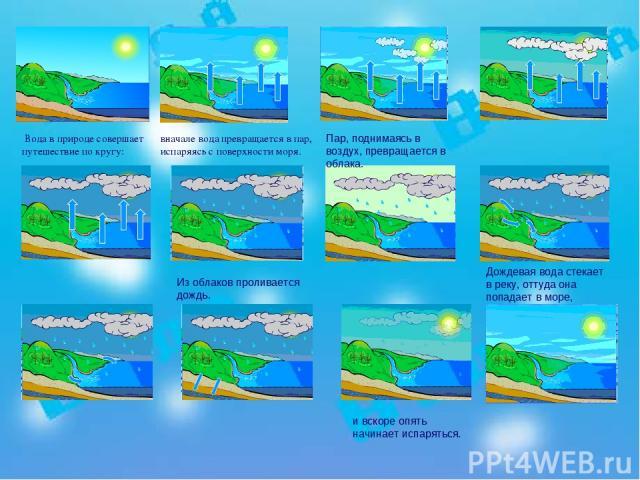вначале вода превращается в пар, испаряясь с поверхности моря. Вода в природе совершает путешествие по кругу: Пар, поднимаясь в воздух, превращается в облака. Из облаков проливается дождь. Дождевая вода стекает в реку, оттуда она попадает в море, и …