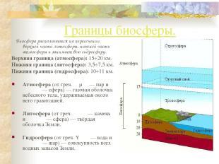 Границы биосферы. Биосфера располагается на пересечении верхней части литосферы,