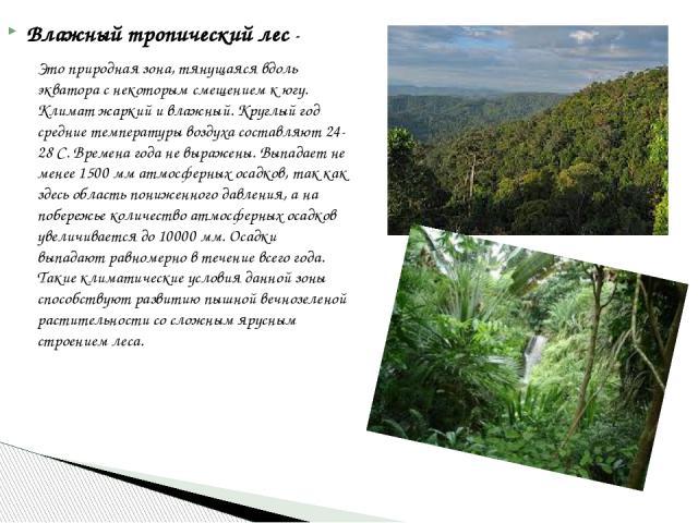 Влажный тропический лес- Это природная зона, тянущаяся вдоль экватора с некоторым смещением к югу. Климат жаркий и влажный. Круглый год средние температуры воздуха составляют 24-28 С. Времена года не выражены. Выпадает не менее 1500 мматмосферных …