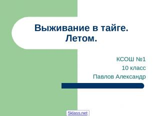 Выживание в тайге. Летом. КСОШ №1 10 класс Павлов Александр 5klass.net