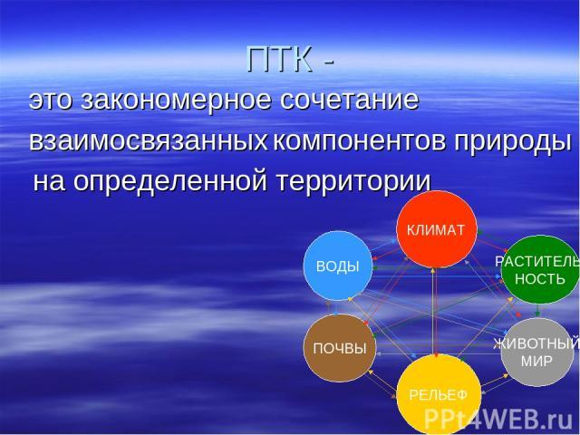 ПТК - это закономерное сочетание взаимосвязанных на определенной территории компонентов природы КЛИМАТ ВОДЫ РАСТИТЕЛЬ- НОСТЬ РЕЛЬЕФ ЖИВОТНЫЙ МИР ПОЧВЫ