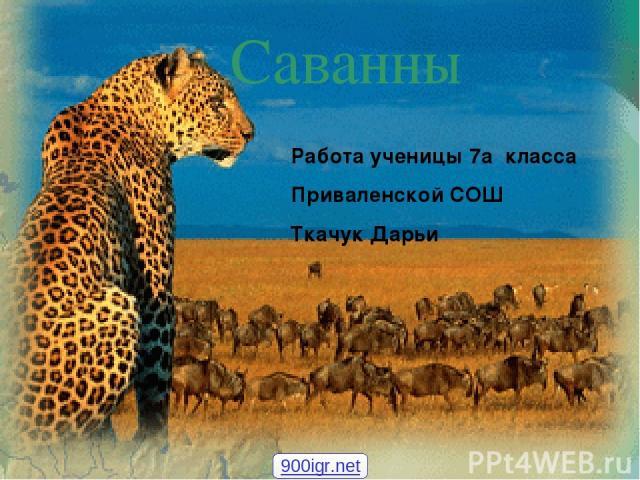 Работа ученицы 7а класса Приваленской СОШ Ткачук Дарьи Саванны 900igr.net