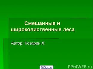 Смешанные и широколиственные леса Автор: Козарин Л. 900igr.net