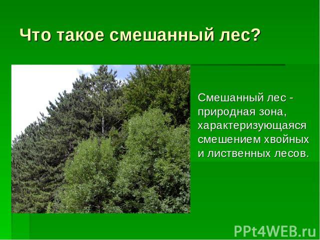 Что такое смешанный лес? Смешанный лес - природная зона, характеризующаяся смешением хвойных и лиственных лесов.