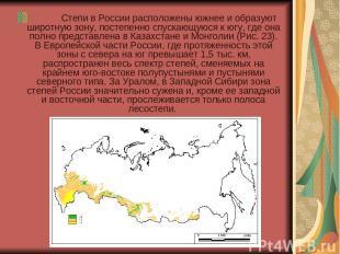 Степи в России расположены южнее и образуют широтную зону, постепенн