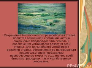 Сохранение биологического разнообразия степей является важнейшей составной часть