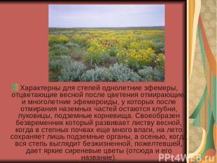 Характерны для степей однолетние эфемеры, отцветающие весной после цветения отми