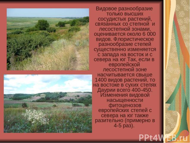 Видовое разнообразие только высших сосудистых растений, связанных со степной и лесостепной зонами, оценивается около 6 000 видов. Флористическое разнообразие степей существенно изменяется с запада на восток и с севера на юг Так, если в европейской…