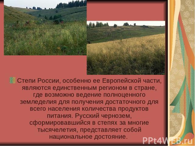 Степи России, особенно ее Европейской части, являются единственным регионом в стране, где возможно ведение полноценного земледелия для получения достаточного для всего населения количества продуктов питания. Русский чернозем, сформировавшийся в степ…