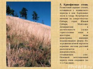 5. Криофитные степи. Реликтовый вариант степей, оставшихся с ледникового периода