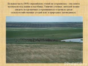 Большая часть (90%) евразийских степей не сохранилась - она занята человеком под