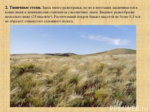 2. Типичные степи. Здесь много разнотравья, но их в вегетация заканчивается в ко
