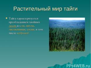 Растительный мир тайги Тайга характеризуется преобладанием хвойных лесов из ели,