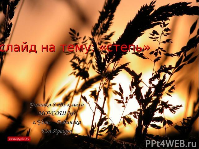 слайд на тему: «степь» Ученика 8 «В» класса МОУСОШ №6 г. Усть – Лабинска Юн Артура