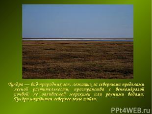 Тундра — вид природных зон, лежащих за северными пределами лесной растительности