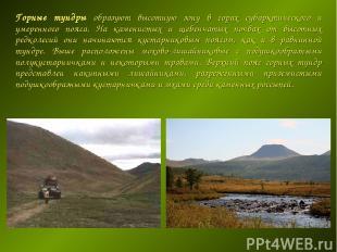 Горные тундры образуют высотную зону в горах субарктического и умеренного пояса.