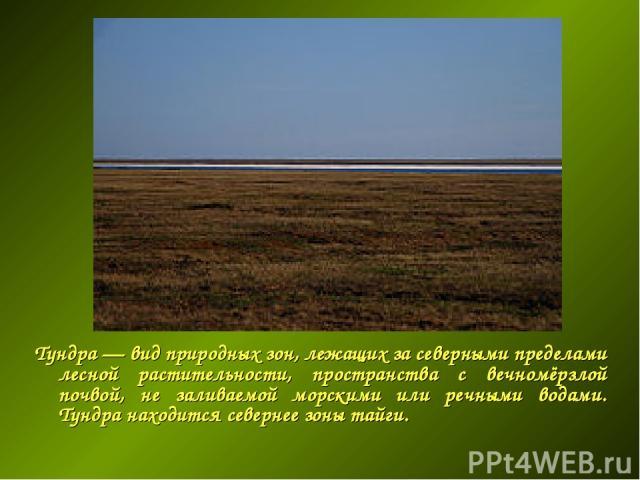Тундра — вид природных зон, лежащих за северными пределами лесной растительности, пространства с вечномёрзлой почвой, не заливаемой морскими или речными водами. Тундра находится севернее зоны тайги.