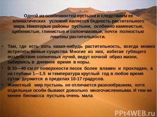 Одной из особенностей пустыни и следствием ее климатических условий является бед