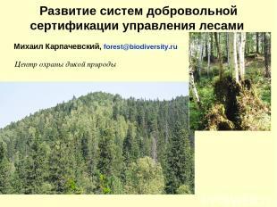 Развитие систем добровольной сертификации управления лесами Михаил Карпачевский,