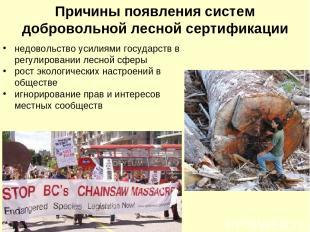 Причины появления систем добровольной лесной сертификации недовольство усилиями