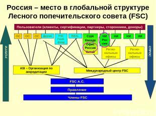 Россия – место в глобальной структуре Лесного попечительского совета (FSC)
