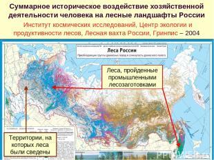 Суммарное историческое воздействие хозяйственной деятельности человека на лесные