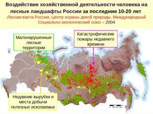Воздействие хозяйственной деятельности человека на лесные ландшафты России за по