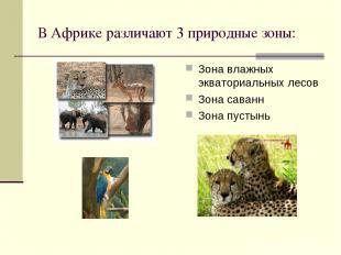 В Африке различают 3 природные зоны: Зона влажных экваториальных лесов Зона сава