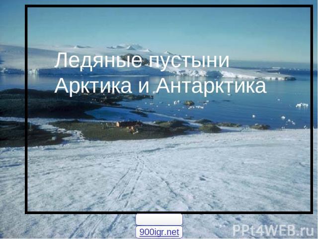 Ледяные пустыни Арктика и Антарктика Ледяные пустыни Арктика и Антарктика 900igr.net