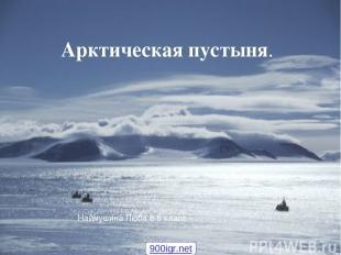 Арктическая пустыня. Арктическая пустыня. Арктическая пустыня. Наймушина Люба 8