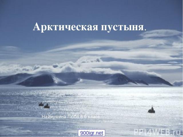 Арктическая пустыня. Арктическая пустыня. Арктическая пустыня. Наймушина Люба 8 б класс 900igr.net