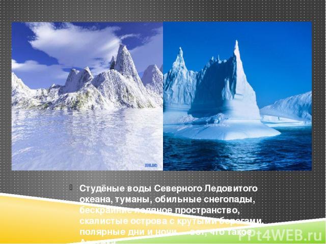 Студёные воды Северного Ледовитого океана, туманы, обильные снегопады, бескрайние ледяное пространство, скалистые острова с крутыми берегами, полярные дни и ночи - вот, что такое Арктика.