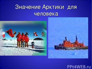 Значение Арктики для человека