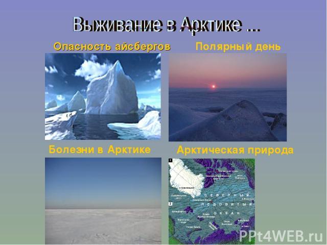 Полярный день Опасность айсбергов Болезни в Арктике Арктическая природа