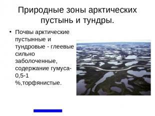 Природные зоны арктических пустынь и тундры. Почвы арктические пустынные и тундр