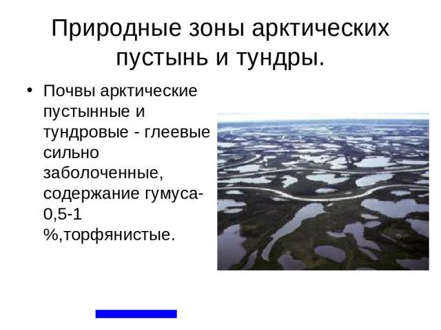 Природные зоны арктических пустынь и тундры. Почвы арктические пустынные и тундровые - глеевые сильно заболоченные, содержание гумуса-0,5-1 %,торфянистые.