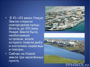 В XI—XII веках Новую Землю открыли новгородские купцы. Вплоть до XIX века Новая